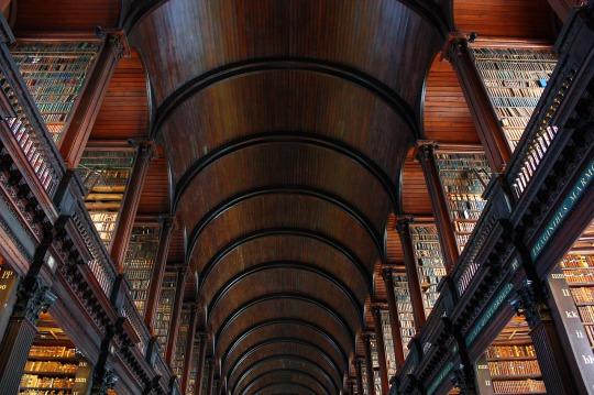 biblioteca akashica techo